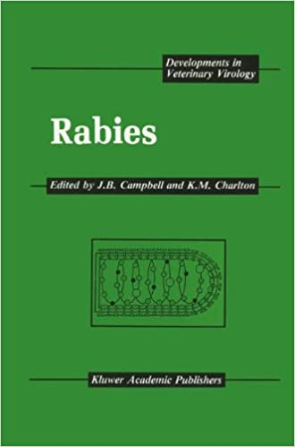 Descargar Utorrent Android Rabies Mega PDF Gratis