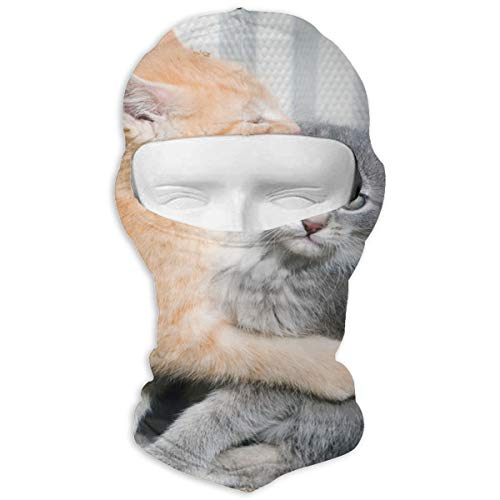 Balaclava Cat Memes Full Face Masks Ski Sports Cap Motorcycle Neck Hood ()