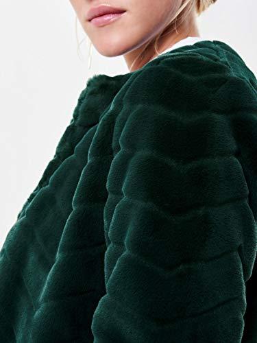 Pins Blouson Yong De Jacqueline Ponderosa Femme g4xIn