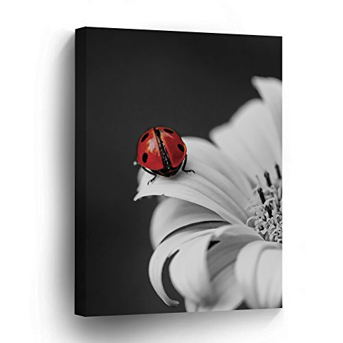 wonbye Canvas Prints Wall Art - Red Lady Bug Gallery Contemporary Art Print Ready to Hang for Home Decoration - 19