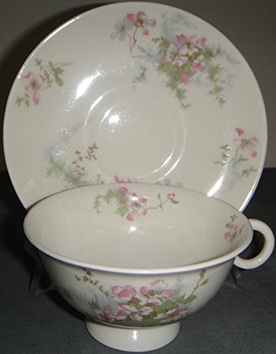 Haviland Apple Blossom (New York) Footed Cup & - Footed Cup Saucer