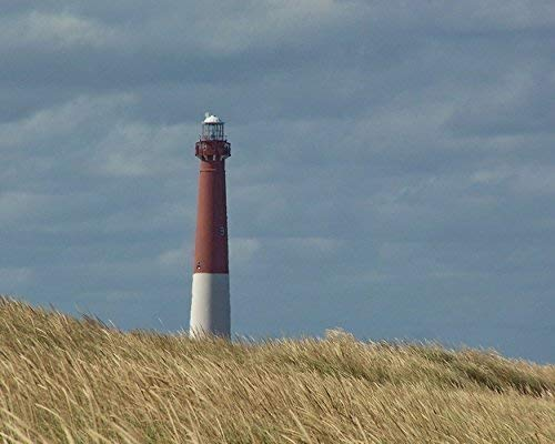 - Photograph of the Barnegat Lighthouse on Long Beach Island - 'Old Barney & Beach Grass' - Coastal Wall Art - Beach Photography
