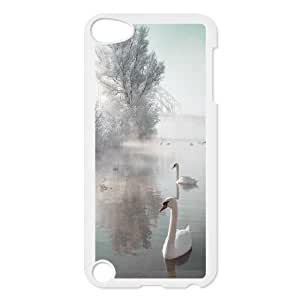 Chaap And High Quality Phone Case FOR Ipod Touch 5 -Swan Ballet Dancing Pattern-LiShuangD Store Case 18