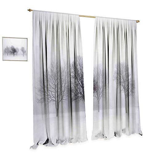 cobeDecor Winter Thermal Insulating Blackout Curtain Foggy Misty