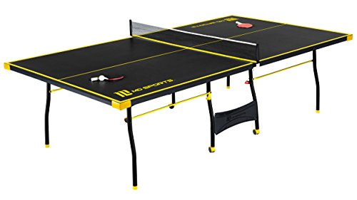 Buy ping pong table for the money