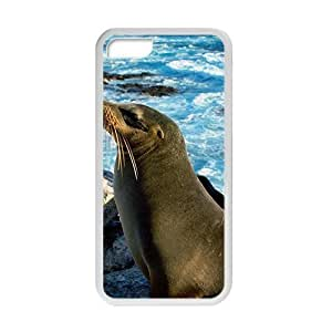 Cute Sea Lion White Phone Case for iPhone 5 5s