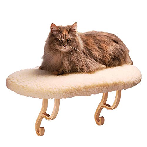 K&H Pet Products is the best Cat Shelf? Our review at cattime.com uncovers all pros and cons.