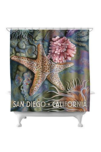 Lantern Press San Diego, California - Tidepool 45742 (74x74 Polyester Shower Curtain) (Crate San & Diego Barrel)