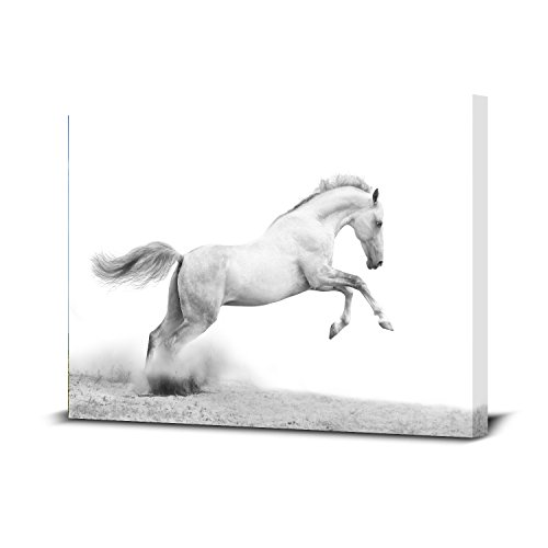 Royllent 1 Panel Horse Framed Wall Art 16x24inch Painting The Picture Print On Canvas For Home Decor Decoration Gift piece (Stretched By Wooden Frame,Ready To Hang) (RA-CP0057-B)