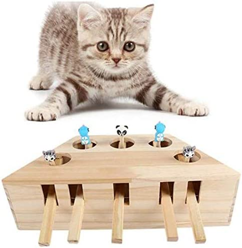 KJSMA Juguete Interactivo para Gato, Juguete de Ejercicio para Gatos, Caja de Rompecabezas con Diferentes Juguetes de Dibujos Animados, 5 Agujeros: Amazon.es: Productos para mascotas