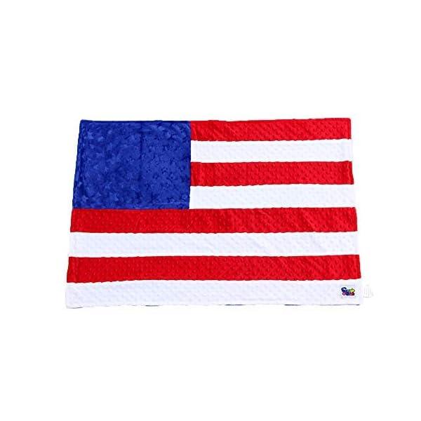 Minky Dot Plush USA Flag 24″ x 36″ Baby Blanket