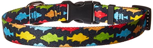 Yellow Dog Design Rainbow Fish Black Dog Collar, Small-3/4 Wide fits Neck Sizes 10 to 14