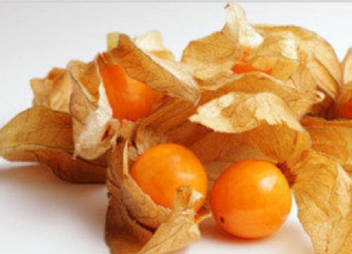 Sale Non-GMO Organic Aunt Molly's Ground Cherry/Cape Gooseberries 25+Seed Make pies jam etc … Greenlane Gardens