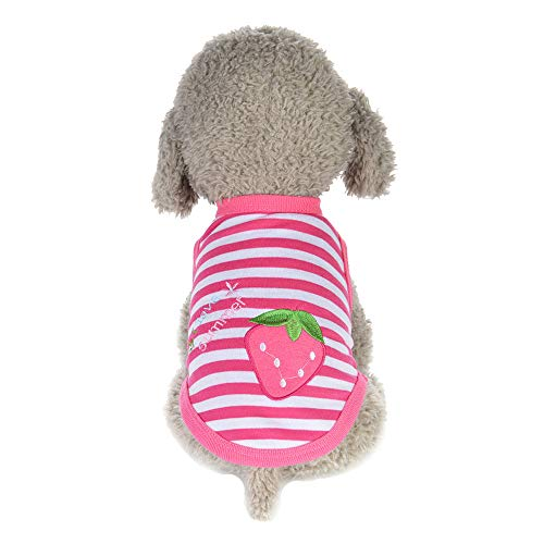 Cute Puppy Vest Spring Cute Cartoon Strawberry Striped Warm Pet Dog Clothes Soft Pullover for Small Doggie Cat Apparel (Pink, XS)