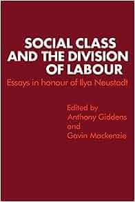 Division of labor essay