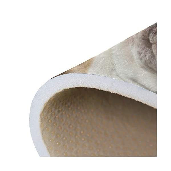 alaza English Bulldog with Cigar and Glass Area Rug Rugs for Living Room Bedroom 3'x2' 6