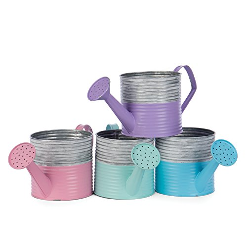 Skalny 84837 Round Tin Watering Can Planters 4 - Tin Watering Can