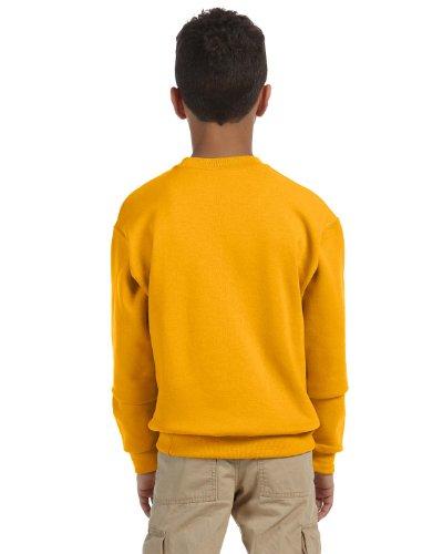 562b Jerzees Sweatshirt (Jerzees 8 oz Youth Sweatshirt (562B) Available in 16 Colors Medium Gold)