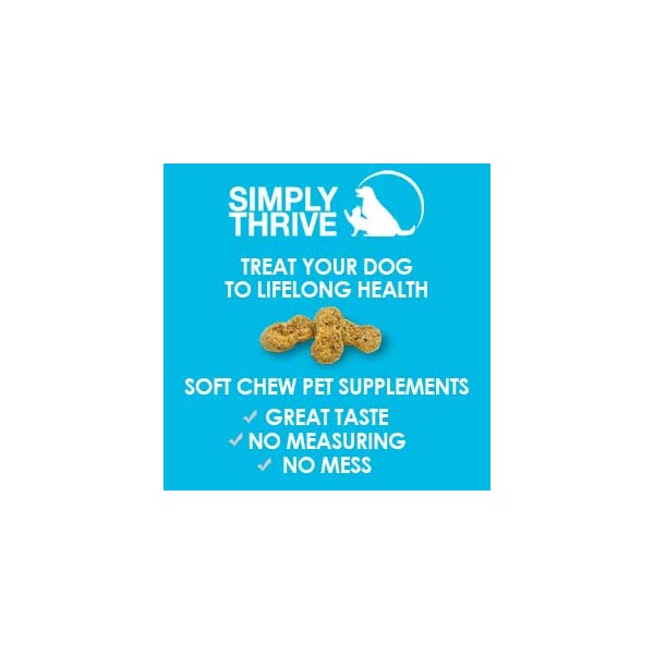 Turmeric Curcumin Supplement for Dogs | 90 ct Soft Chew Treats | Helps With Mobility Hip Joint & Arthritis | Coconut Oil Aids Digestion and Immunity | Natural Source of Antioxidant, Antiinflammatory 10