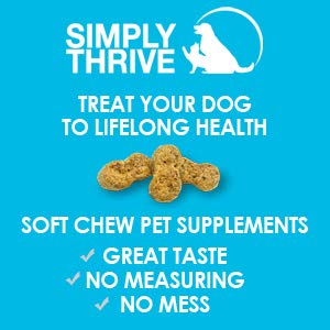 Turmeric Curcumin Supplement for Dogs | 90 ct Soft Chew Treats | Helps with Mobility Hip Joint & Arthritis | Coconut Oil Aids Digestion and Immunity | Natural Source of Antioxidant, Antiinflammatory