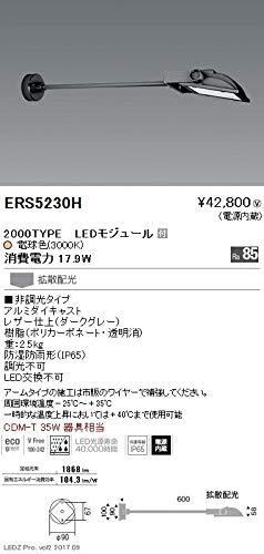 ENDO LEDアウトドアスポットライト(看板灯) CDM-T35W相当 電球色3000K 防湿防雨形 拡散配光 ダークグレー ERS5230H (ランプ付)   B07HQ2NGYP