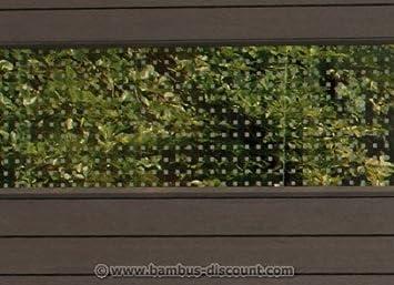 Amazon De Wpc Sichtschutz Glas Streifen Hoch 180x30cm
