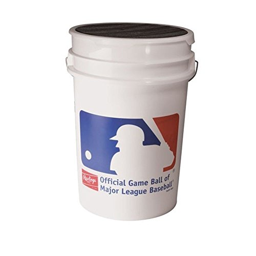 ROLB1X Practice Baseballs in Bucket 3 Dozen