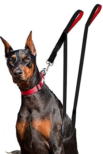 Heavy Duty Dual Padded Handle Dog Leash by Active Leashes - Long 8ft Lead - Ideal for Large to Medium Dogs