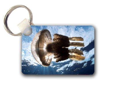 Jelly Fish Keychain Key Chain Great Gift Idea