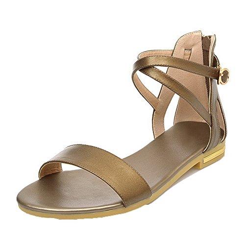 AalarDom Womens Open-Toe Low-Heels PU Solid Zipper Sandals Gold-shi
