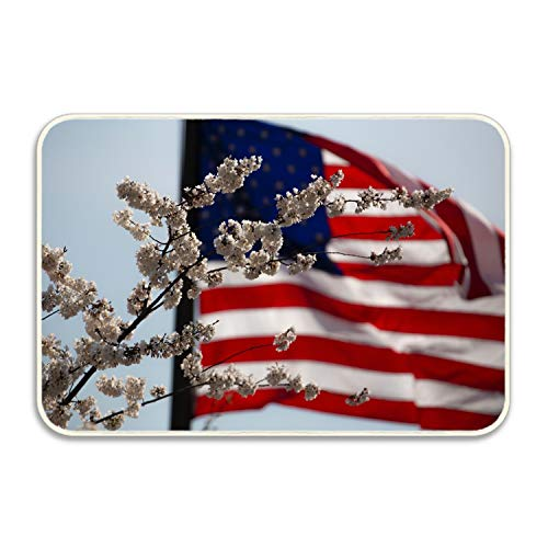 FunnyLife Indoor/Outdoor Doormat Non Slip Front Entrance Door Mat Rug, Outside Patio, Inside Entry Way, Catches Dirt Dust Snow & Mud - American Flag Flower