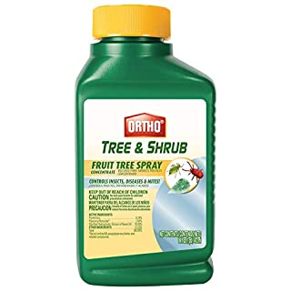 Ortho Tree & Shrub Fruit Tree Spray, 16-Ounce