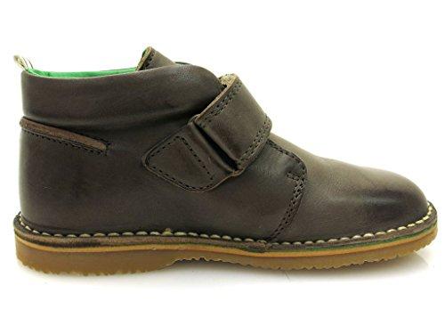 BellyButton - Desert Boots - BB005-01 Brown