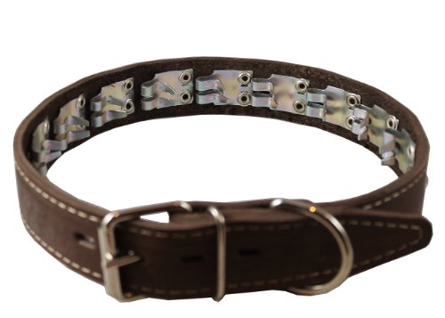 Leather Pinch Collar - Training Pinch and Genuine Leather Studded Dog Collar Fits 18