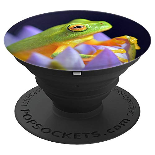 Green Frog Animal Design - PopSockets Grip and Stand for Phones and Tablets