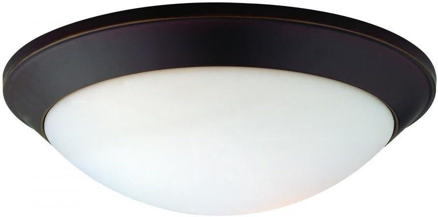 Dolan Designs 5402-78 2Lt Bolivian Rainier 2 Light Flushmount