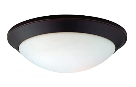 Amazon.com: Dolan Designs 5402 2 Light Down Light Flushmount ...