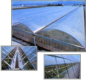 農ビ 厚さ0.1mm×幅270cm×長さ100m B00JL3TJFY
