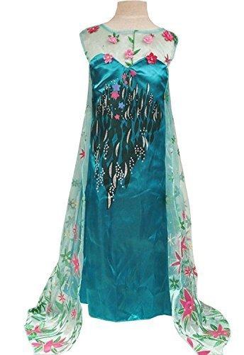 Amazon.com: Frozen Fever disfraz de Elsa inspirado en (4 – 5 ...
