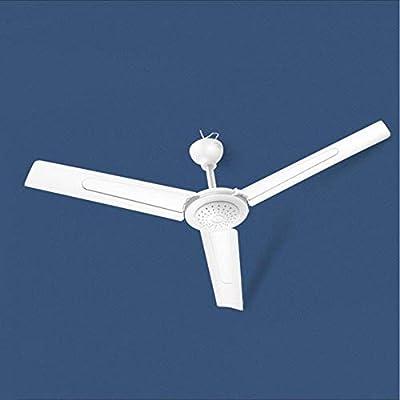 REGPL - Ventilador de techo para salón doméstico - Ventilador de ...