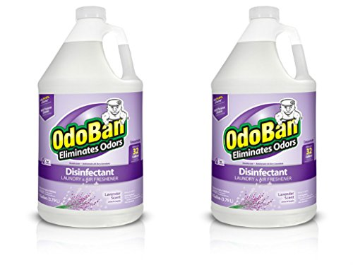 OdoBan Odor Eliminator and Disinfectant Concentrate, Lavende