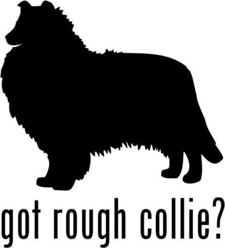 Got Rough Collie Herding Dog Pet Graphic Car Truck Window Decor Decal Sticker - Die Cut Vinyl Decal for Windows, Cars, Trucks, Tool Boxes, laptops, MacBook - virtually Any Hard, Smooth Surface