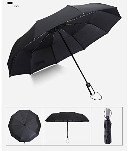 60 MPH Windproof Umbrellas - EveShine Fast Drying Travel Umbrella, 10 Ribes Reinforced Windproof Frame, Auto Open Close Button for One Handed Operation, Slip-Proof Handle for Easy Carry ()