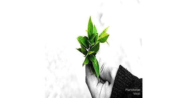 Amazon.com: Logrono(Viridi): Pianobebe: MP3 Downloads