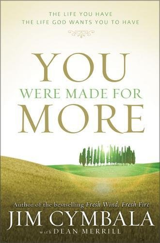 Download You Were Made for More: The Life You Have, the Life God Wants You to Have pdf epub