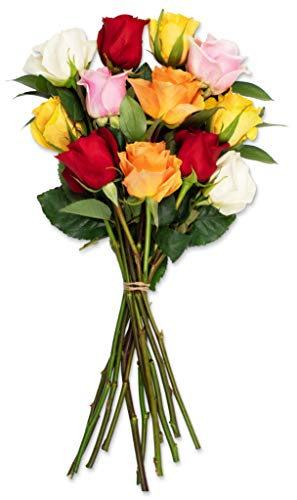 Benchmark Bouquets Dozen Rainbow Roses, No Vase (Fresh Cut Flowers)