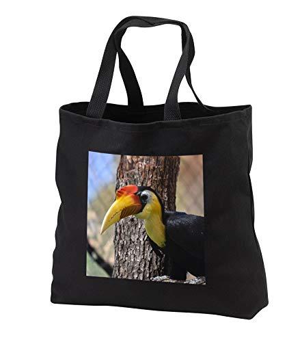 Susans Zoo Crew Animal - Toucan bird head against pine tree - Tote Bags - Black Tote Bag JUMBO 20w x 15h x 5d (tb_294913_3)
