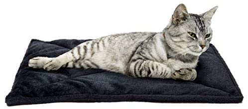Furhaven 57237070 is the best Cat Blanket? Our review at cattime.com uncovers all pros and cons.