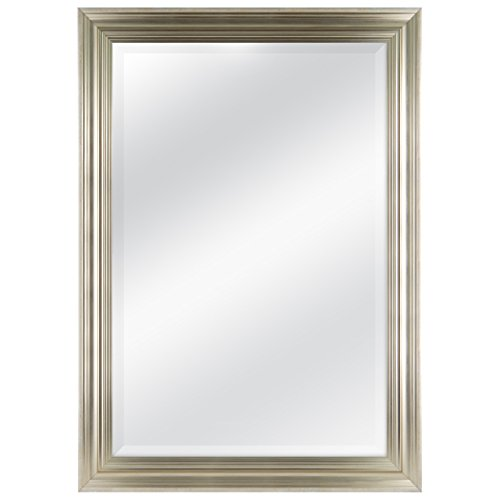 MCS 24 by 36 inch Scoop Mirror, 29.5 by 41.5 inch Outside Dimension, Champagne Finish 20553, 29.5 x 41.5 Inch,