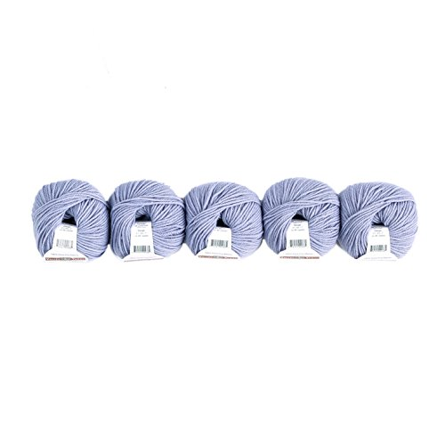 Valley Yarns Valley Superwash 5-Pack (Washable, Worsted Weight Yarn, 100% Extra Fine Merino Wool) - #563 Ice Blue ()